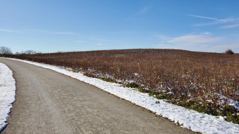 Prairie-snow1