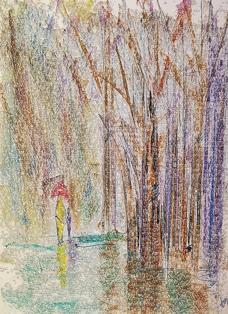Rain forest1